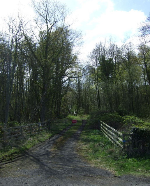 Track into Thumblehill Wood