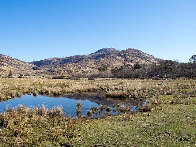 Field at Lochbuie