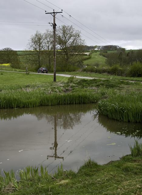 Pond near Fimber, E Yorks