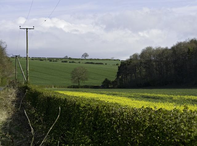 Broad Dale, near Fimber, E Yorks