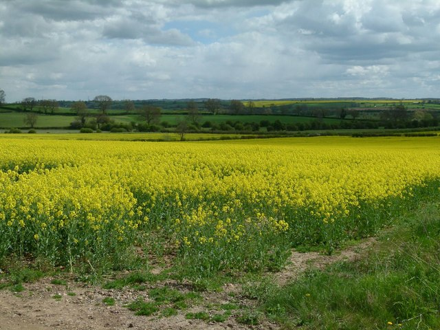 Leicestershire landscape near Ragdale