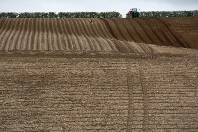 Cultivating near Fimber, E Yorks