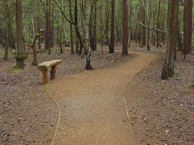 Bedser Trail, Horsell Common