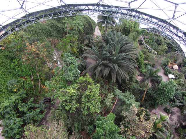 Tropical Biome of the Eden Project