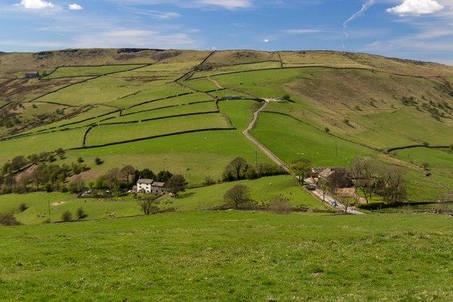 Hills Farm