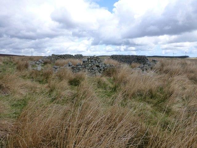 Derelict sheepfold