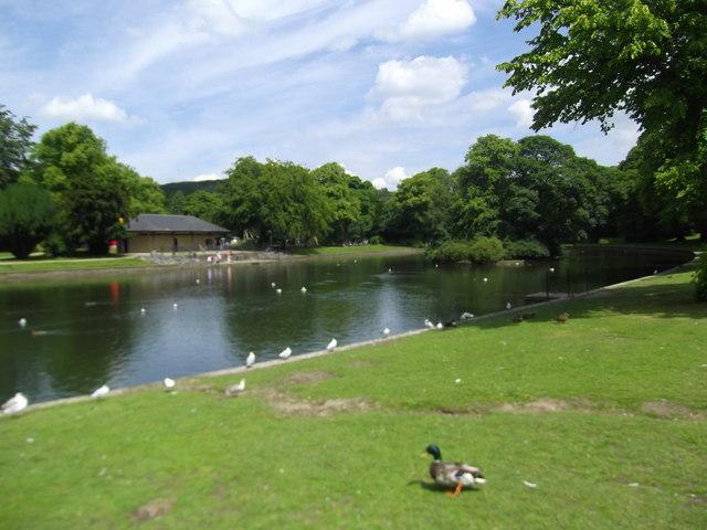 Lake at the Pavilion Gardens