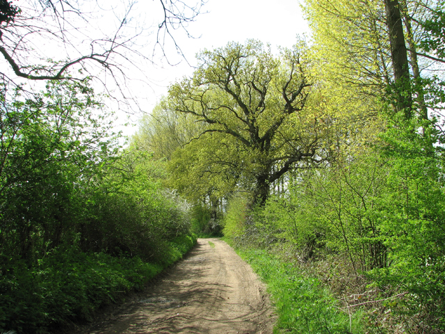 Footpath to Ashby St Mary