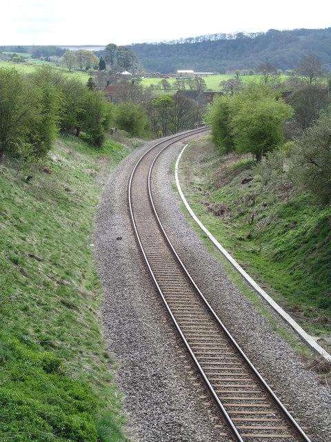 Danger, rabbit on the track