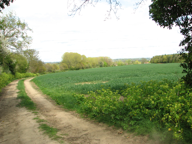 Footpath from Ashby St Mary to Claxton