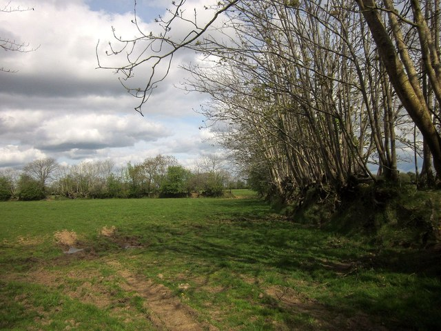 Field and banks near Wiltown