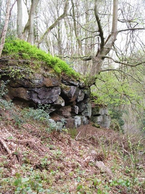 Rock outcrop in East Arnecliff Wood