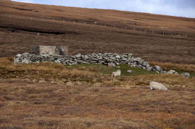 Sheepfold beside the Burn of Dalamut, near West Sandwick