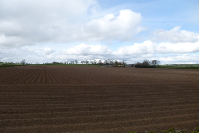 Ploughed fields near Rudston