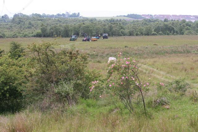 Commonhead Moss LNR