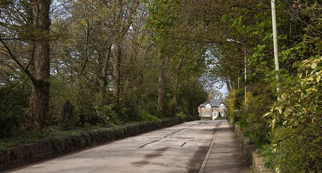 The farm road towards Goosnargh