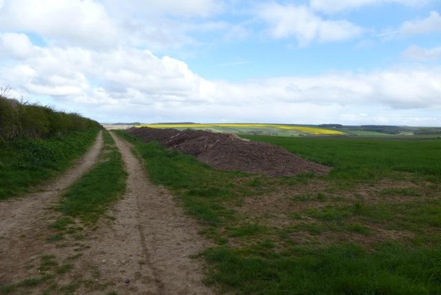 Bridleway to Rudston