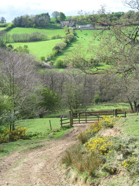 Across the valley of Stonegate Beck