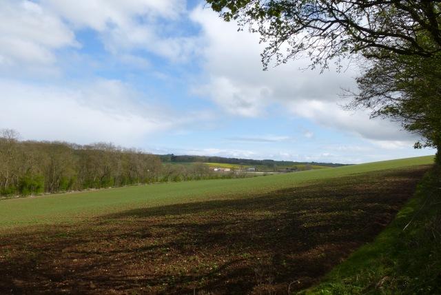 Farmland near Hallowkiln Woods