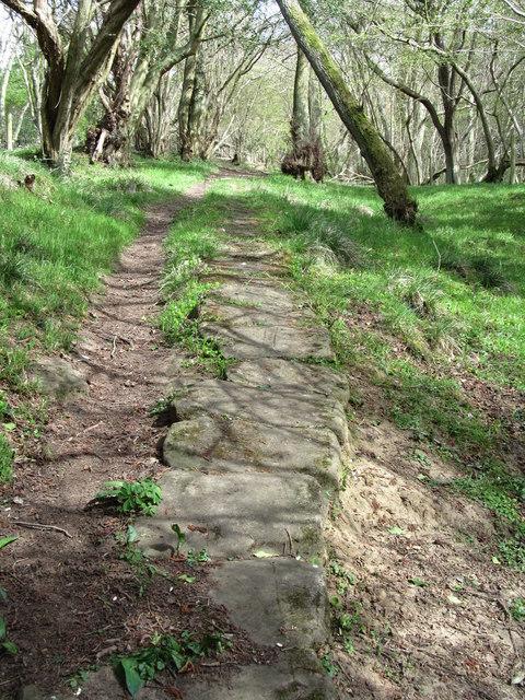 Bridleway below Thornhill Farm