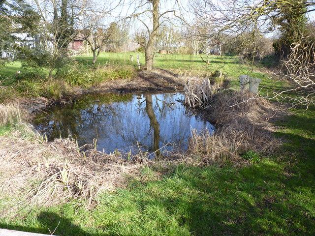 Garden pond at Hadzor