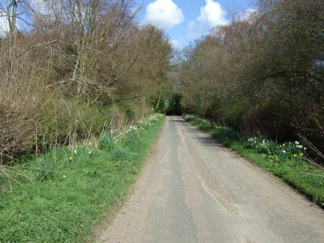 Minor road into Eshott