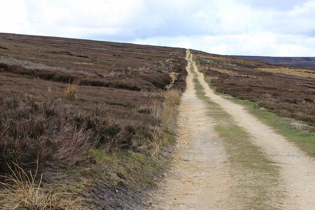 Moorland track to Bilsdale Ridge