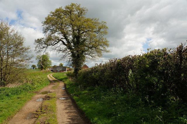 Footpath to Dairy Farm