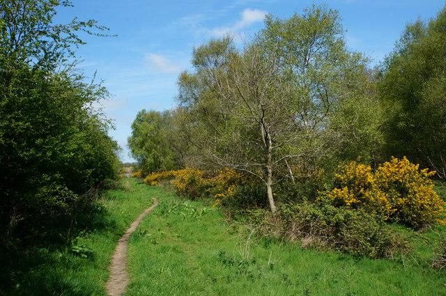 Itteringham footpath