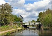 SJ9397 : Dewsnap Railway Bridge by Gerald England