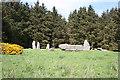 NJ9547 : Aikey Brae Recumbent Stone Circle (2) by Anne Burgess