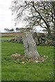 NJ9450 : Auchmachar Recumbent Stone Circle (2) by Anne Burgess