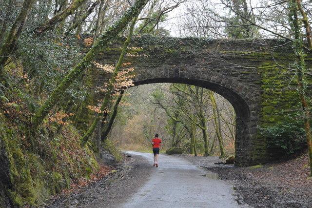 Bridge over the West Devon Way