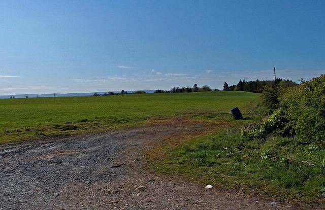 Farmland, Seafield Moor