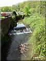 SK3398 : Blackburn Brook from Westwood Bridge by Neil Theasby