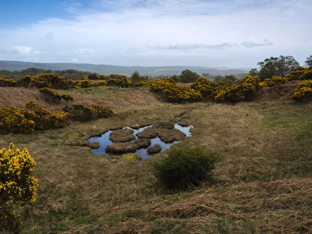 Pond on slopes of Ardwall Hill