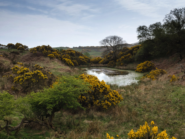 Pond on southeastern slope of Ardwall Hill