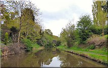 SJ9391 : Peak Forest Canal by Gerald England