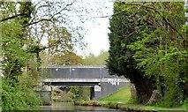 SJ9390 : Hole House Fold Bridge by Gerald England