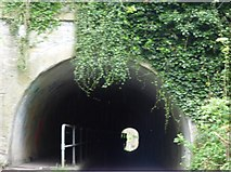 SJ9392 : Entering Woodley Tunnel by Gerald England