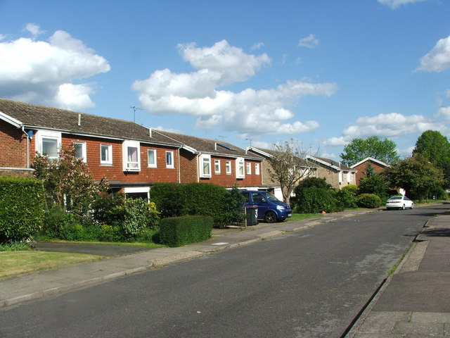 Rushmead Close Canterbury Chris Whippet Geograph