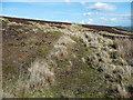 SE0227 : Firebreak path on the slopes of Crow Hill, Mytholmroyd by Humphrey Bolton