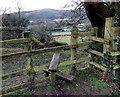 ST2589 : Canalside stile near Pontymister by Jaggery