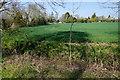 TL5972 : Farmland on the edge of Soham by Bill Boaden
