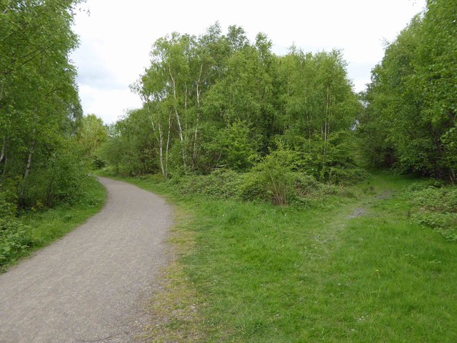 Trail in Walton Country Park