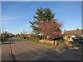 TL3558 : Main Street, Highfields Caldecote by Hugh Venables
