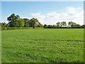 SU9071 : Field by Braziers Lane by Alan Hunt