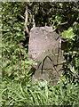 ST5964 : Benchmark on a stone by Neil Owen