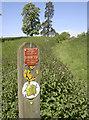 ST5964 : Change of route by Neil Owen