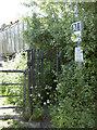 ST5964 : Across Park Farm by Neil Owen